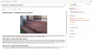 website auditor content editor okno główne
