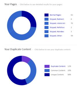 analiza-strony-siteliner